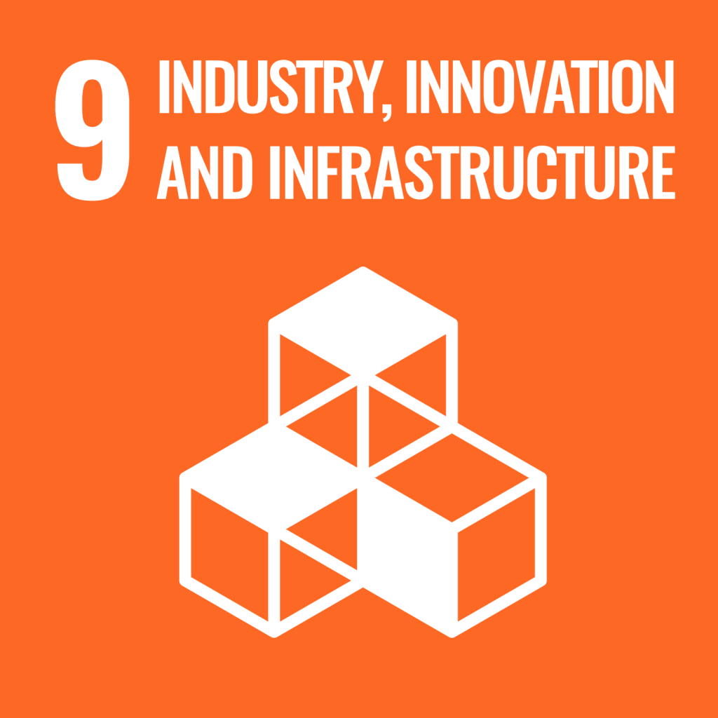 Industry Innovation and Infrastructure - The Spark