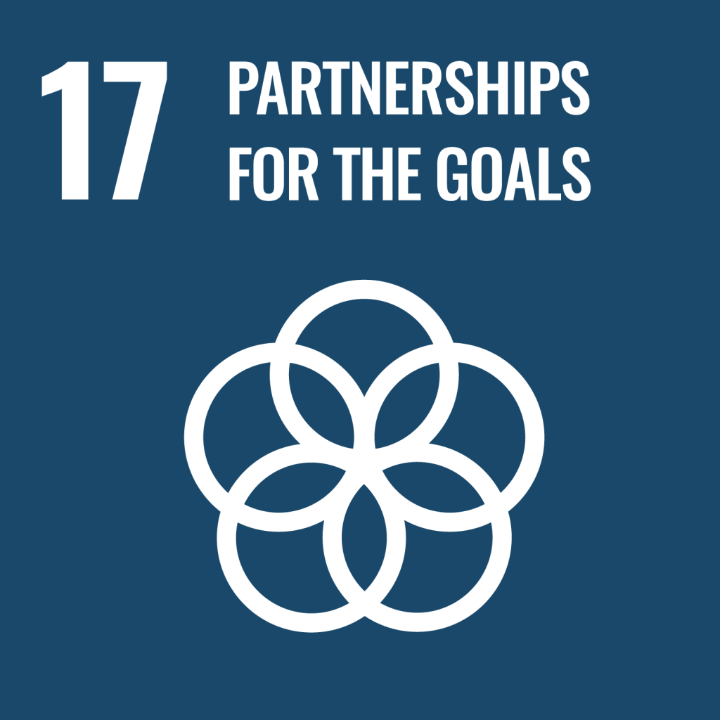 Partnerships for the Goals - The Spark